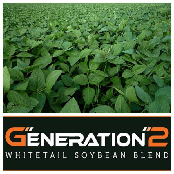 Generation-2 Soybeans