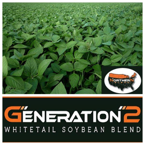 Northern Soybeans