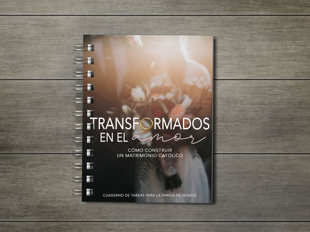 Transformed in Love Workbook en Español