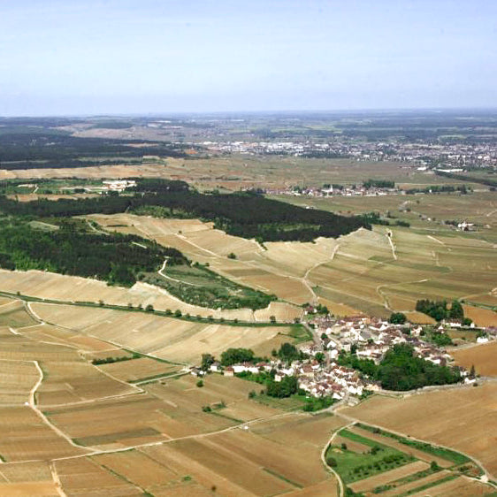 Burgundy: The village of Monthélie from the inside