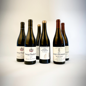 Gevrey-Chambertin's Young Guns - Three Pack