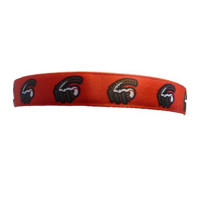 Altoona Curve Bani Bands DS