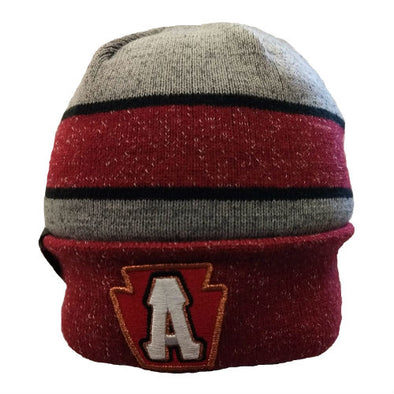 Altoona Curve New Era Knit Cap '19