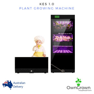 KES 1.0. Plant Growing Machine