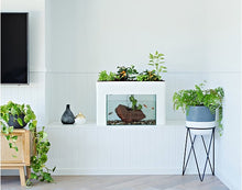 Load image into Gallery viewer, Aquasprouts Aquaponic Setup with Fish Tank