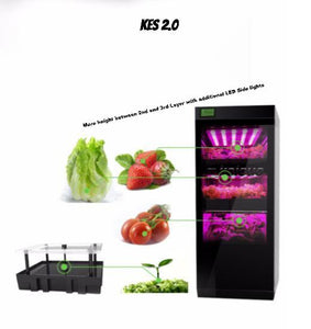 KES 2.0. Tall Plants Growing Machine
