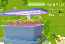 Load image into Gallery viewer, KES 4.0 MicroGreens Farm