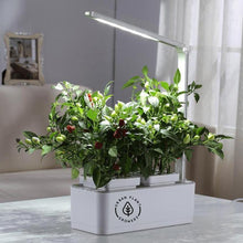 Load image into Gallery viewer, SMART GARDEN. Indoor Garden