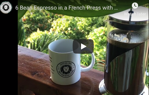 Brewing Coffee in a French Press - an Espresso Blend in a French Press - Delicious