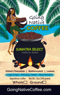 Sumatra Select Coffee Subscription - Sumatra Bener Meriah Mandheling Gr1 - Going Native Coffee Club