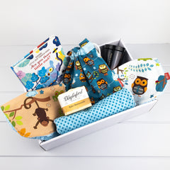 Baby Boy Gift Set - Blue Owls fabric