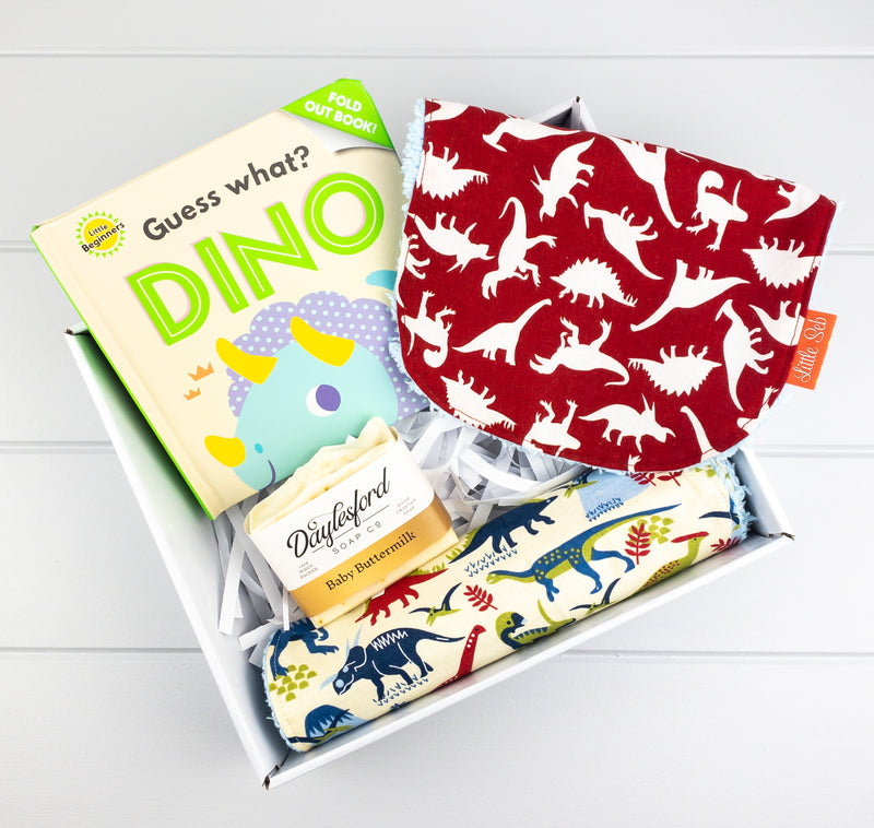 Baby Boy Gift Set - Dinosaur fabric