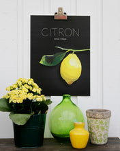 Load image into Gallery viewer, Citron - Poster 30x40