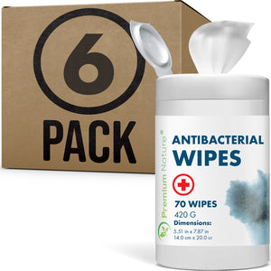 6 Pack Anti Bacterial Wipes