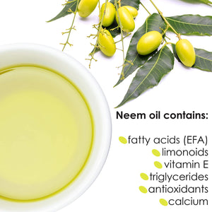 natural neem oil premium nature