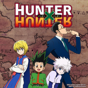 A summary about hunter X