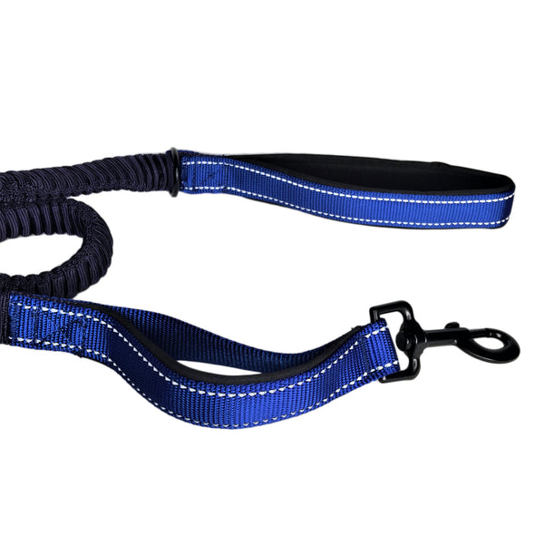 Bungee Stretch Leash Blue Bottom Handle