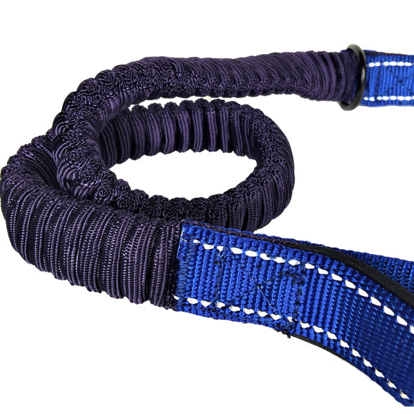 Bungee Stretch Leash Blue Cord