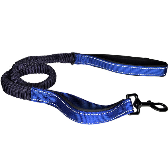 Bungee Stretch Leash Blue Whole