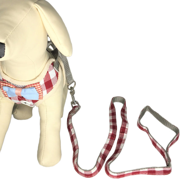 Checkered Dog Leash Red with Dog
