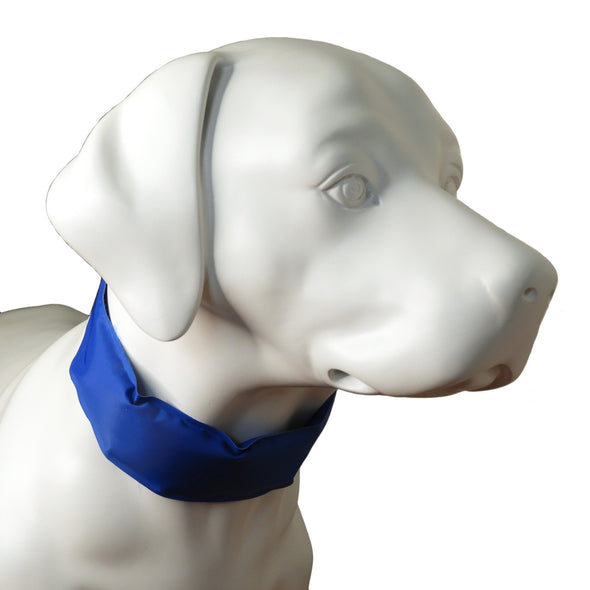 Cooling Collar for Dog