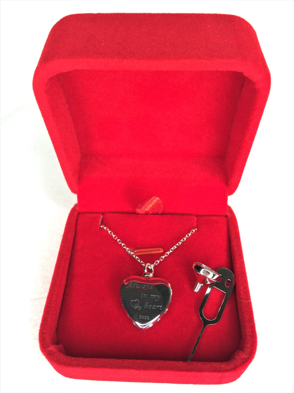 Dog Cremation Necklace Paw Whole Box