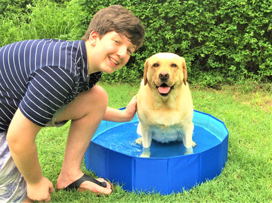 Amazing Dog Pool - Foldable