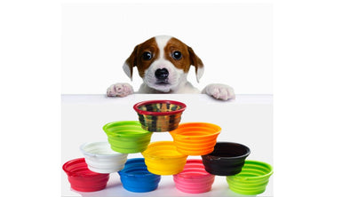Flat dog bowl, Drinking/ food Dog Bowl Foldable/ Collapsible