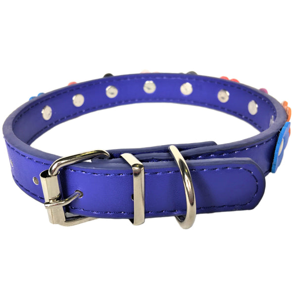 Flower Dog Collar Blue Back
