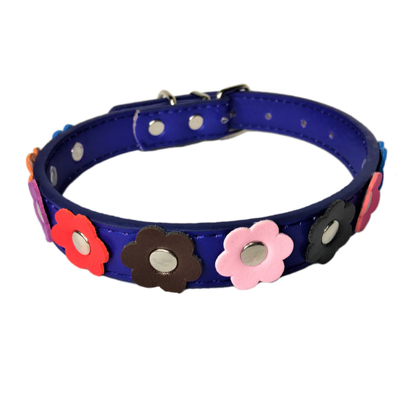 Flower Dog Collar Blue Front