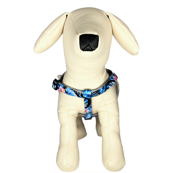 Hawaiian Leash and Harness Front