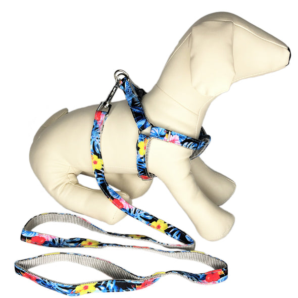 Hawaiian Leash and Harness Whole