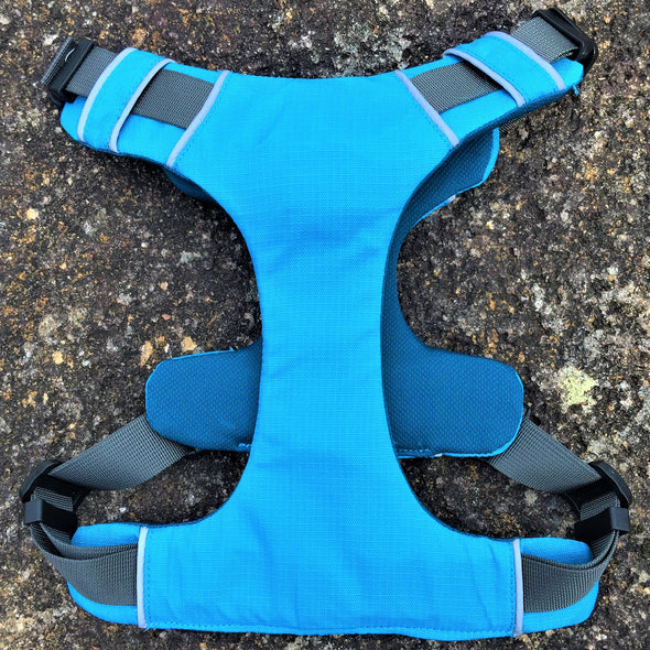 Padded Dog Harness Outdoors