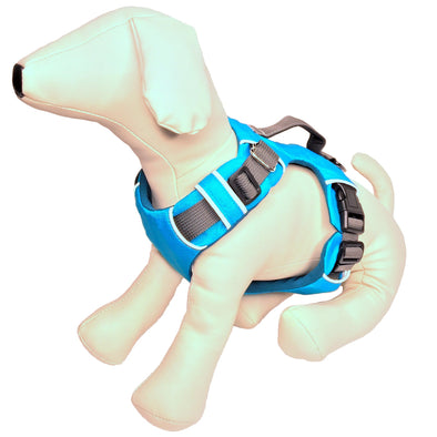 Padded Dog Harness Whole
