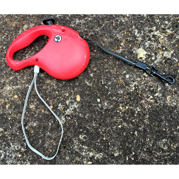 Retractable Leash Red Outdoors