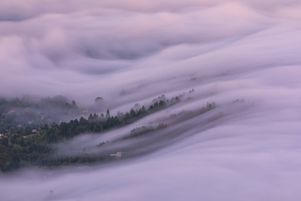 Mill valley fog wave