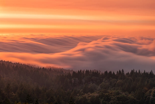 Mt Tamalpais fog wave long exposure