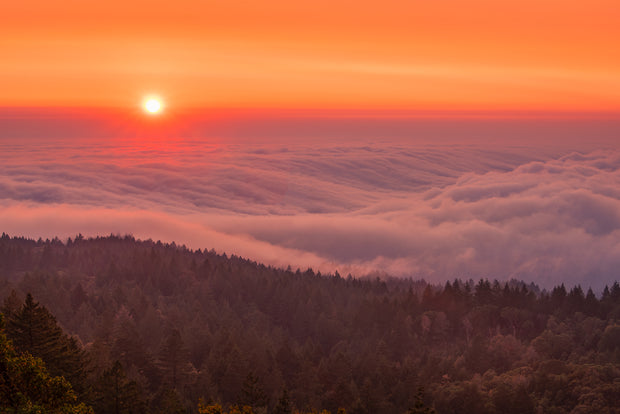 Mt Tamalpais air base fog sunset