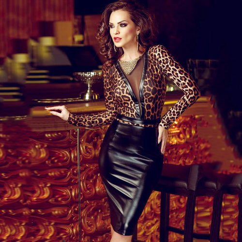 Leopard-print Mesh Sheer Skinny Dress