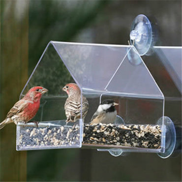 Parrot Lovebird Canary Aviary Transparent Window Outdoor Bird Feeder For Birds Feeding Container