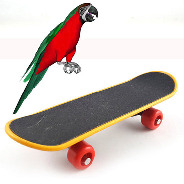 Bird Parrot Intelligence Toys Mini Training Skateboard For Budgies Parakeet Growth Box Toy supply New Arrivals