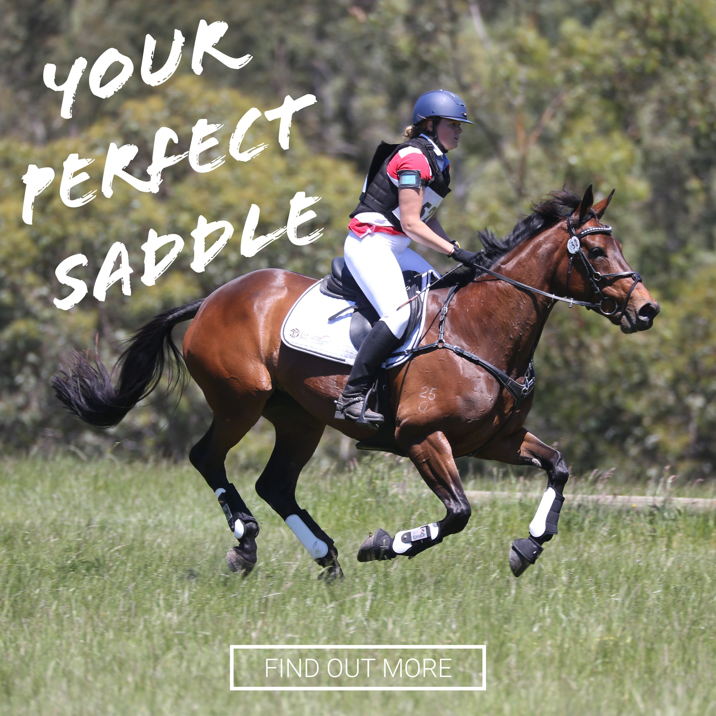 Saddleworld | Amazing Products & Expert Industry Knowledge