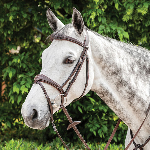Prestige E141 English Bridle