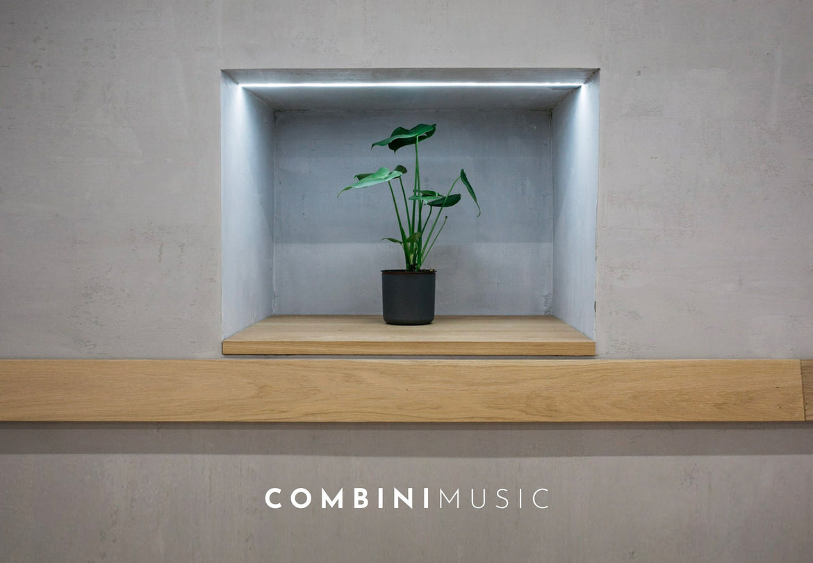 CombiniMusic: Live Acoustics with Adeline Um