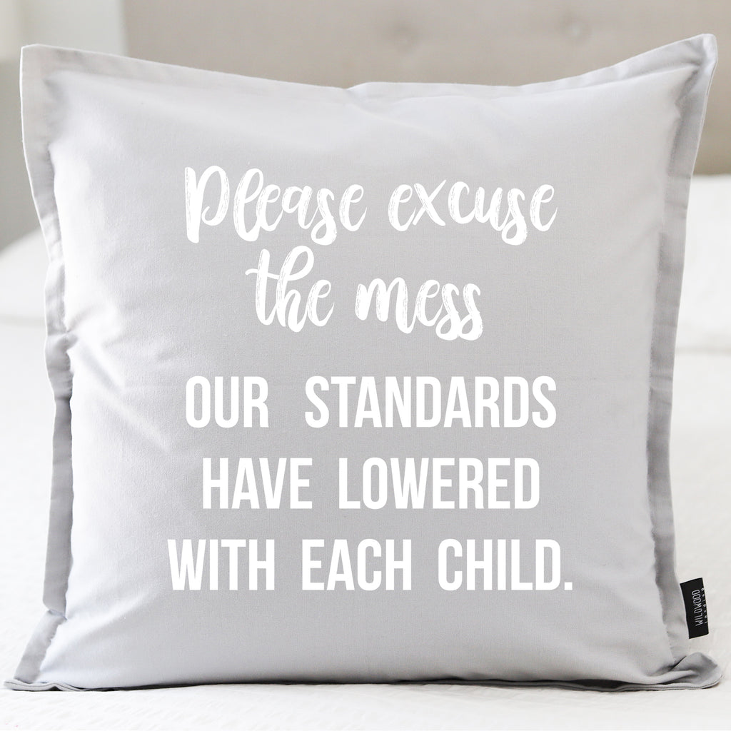 PILLOW: PLEASE EXCUSE THE MESS...