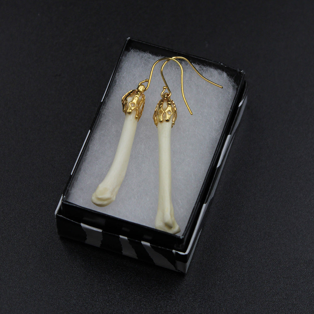 Earrings | Coyote Phalanges | Gold | Large