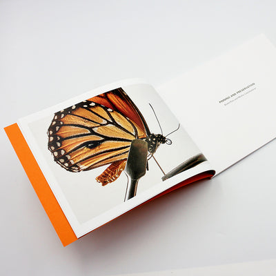 Insect Preservation  e-Book