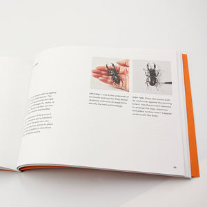 Insect Preservation Book