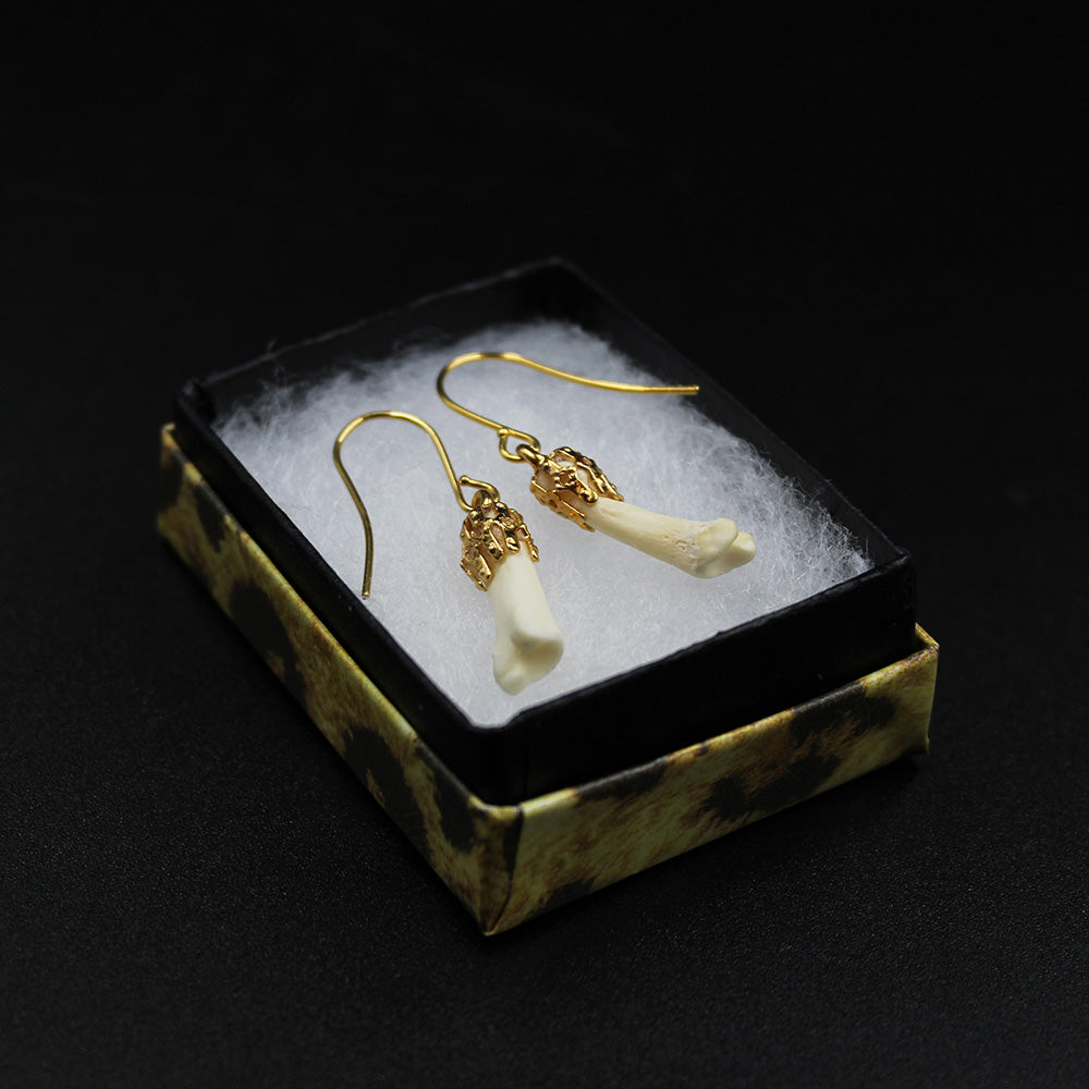 Earrings | Coyote Phalanges | Gold | Small