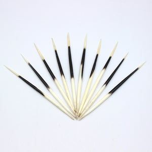 Quills | Porcupine | Set of 10